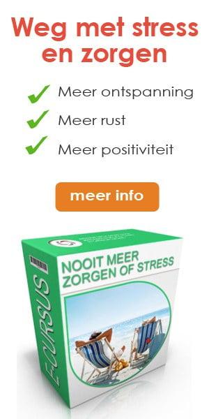 newstart-banner-cursus-nooit-meer-zorgen-of-stress-300-x-600