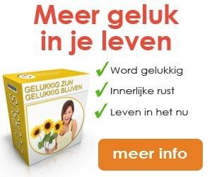 newstart-banner-gelukkig-zijn-300-x-250