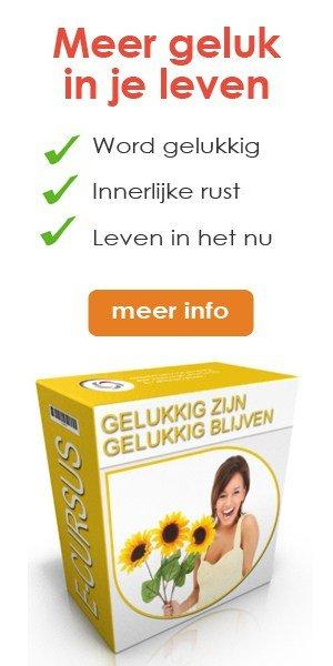 newstart-banner-gelukkig-zijn-300-x-600