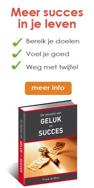 newstart-banner-sleutels-van-geluk-en-succes-300-x-600