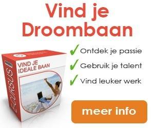 newstart-banner-vind-je-ideale-baan-300-x-250