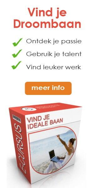 newstart-banner-vind-je-ideale-baan-300-x-600